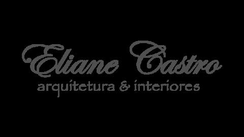 Eliane Castro Arquitetura e Interiores
