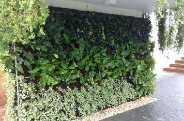 E se você pudesse ter um jardim em seu apartamento?